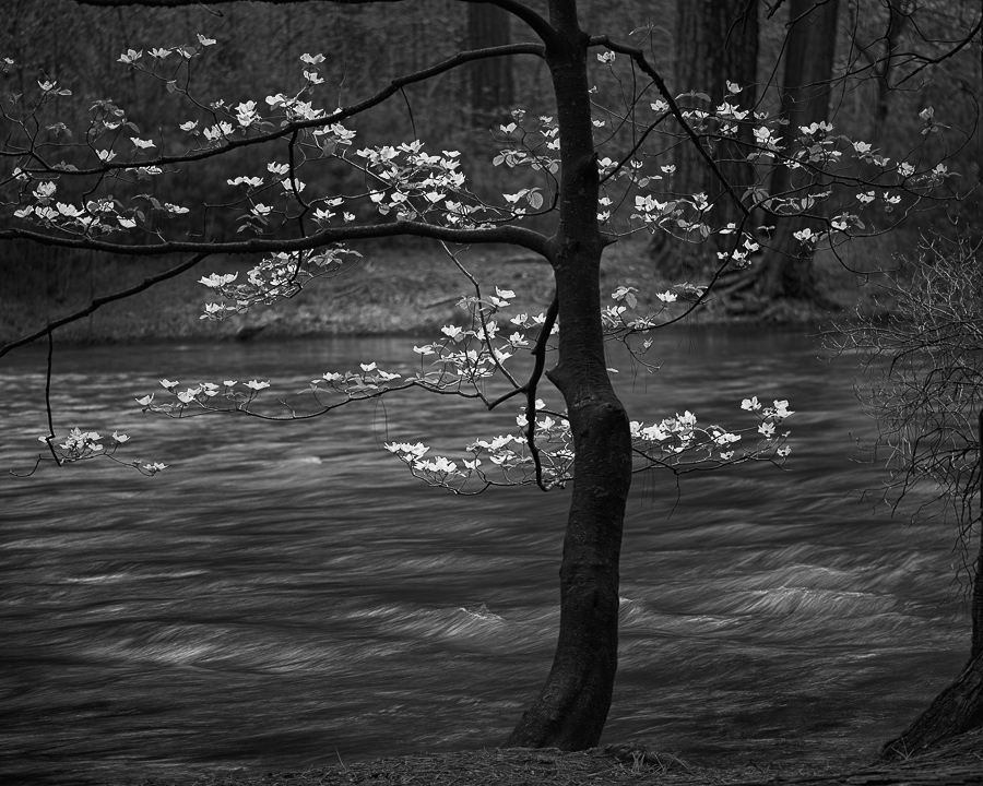 Black And White Landscape Photography By Professional Photographer